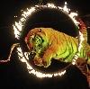 Цирки в Красноярске
